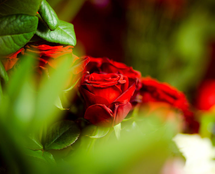 Blomsterbärget
